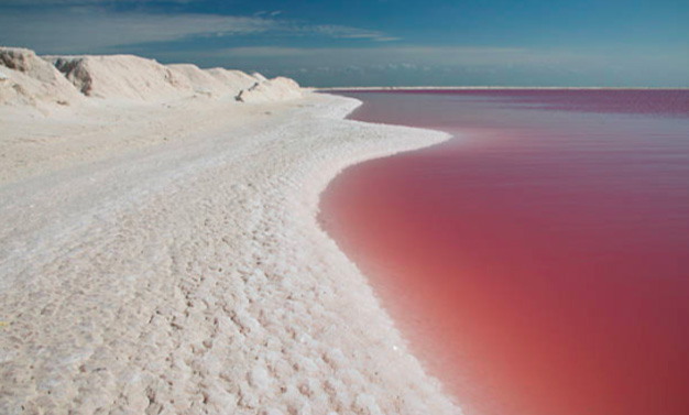 Visit Las Coloradas-15 Things To Do In Cancun Mexico